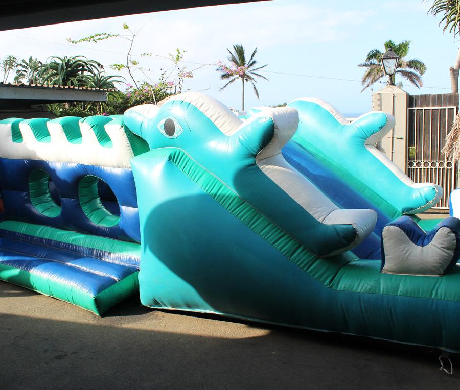dolphin jumping castle